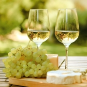 20778716 - various sorts of cheese, grapes and two glasses of the white wine